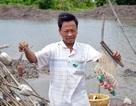 Kiếm tiền triệu mỗi chuyến đi câu cá ngát không cần mồi