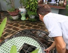 Chuyện kỳ lạ về hai giếng cổ nghìn năm không cạn nước ở Hưng Yên