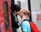 Thành phố Mexico cho phép quan hệ tình dục nơi công cộng