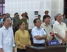 Tuyên án vụ buôn gỗ lậu liên quan nguyên Trưởng Chi cục Hải quan Đà Nẵng