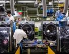 Thị trường việc làm Hàn Quốc có dấu hiệu suy giảm