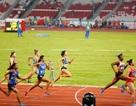 Kết quả thi đấu Asiad 2018 ngày 26/8: Pencak Silat thăng hoa, Tú Chinh bị loại