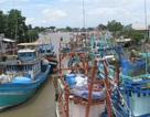 Vụ cử cán bộ đi nước ngoài học quản lý tàu cá: Rút bớt 12 người