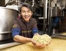 Việt kiều Mỹ thu về 15 triệu USD/năm từ sản xuất đậu phụ