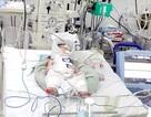 Thai phụ vỡ gan trong phòng chờ sinh