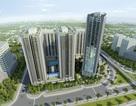Phúc Hà Group ra mắt dự án Thăng Long Capital