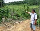 """Quảng Bình: Nhiều hộ dân mất đất rừng, xã """"bất lực"""" giải quyết!"""