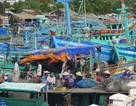 """Giải cứu 12 lao động bị """"giam lỏng"""" trên tàu cá"""