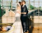 Cô dâu chú rể hôn nhau trong đám cưới, phù dâu ngất lịm dưới chân