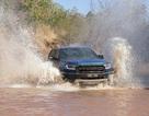 Ford Ranger Raptor bị tính thuế như SUV, sẽ có mặt tại Việt Nam vào tháng 10