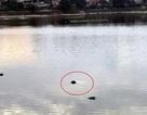 Hà Nội: Vứt cần câu bỏ chạy khi phát hiện thi thể người nổi trên hồ