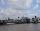 Đồng Nai muốn chủ trì xây cầu Cát Lái nối sang TPHCM