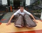 Cá khổng lồ Campuchia, vỏ bưởi tận thu Thái Lan: Người Việt gom về ăn