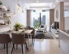 Doanh nghiệp ở khu vực Trần Duy Hưng nên thuê hay mua căn hộ văn phòng?