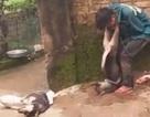 """""""Cẩu tặc"""" bị người dân đánh trói, treo chó vào cổ"""