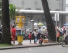 """TPHCM: Bến taxi """"ế khách"""" trong ngày đầu khai trương"""