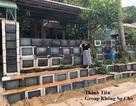 Nhà có hàng rào toàn TV ở Việt Nam lên chuyện lạ báo nước ngoài