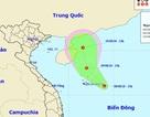 Vùng áp thấp trên Biển Đông có khả năng tiếp tục mạnh lên