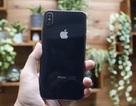 iPhone X Plus chưa ra mắt bất ngờ xuất hiện tại TPHCM