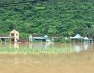 Vụ tin đồn vỡ đập thủy điện Bản Vẽ: Công an vào cuộc truy tìm những đối tượng tung tin