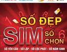 Sở hữu sim số đẹp, tài lộc dễ dàng tại Timsim.com