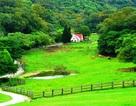 Trải nghiệm nông nghiệp du lịch Đài Loan nghỉ - ăn – chơi đẹp ngất ngây