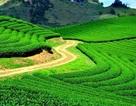 Việt Nam ứng dụng công nghệ 360o trong quảng bá du lịch