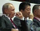 Tổng thống Putin xem thi đấu judo cùng Thủ tướng Nhật Bản