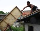 """Philippines """"gồng mình"""" chuẩn bị ứng phó siêu bão Mangkhut"""