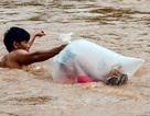 Vụ học sinh chui túi nilon: Bộ GTVT đề nghị khẩn trương xây cầu dân sinh