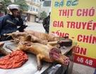 """Hà Nội sẽ không bán thịt chó; Nấm đắt nhất thế giới """"cháy hàng"""" tại Việt Nam"""