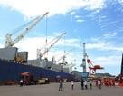 Phát hiện hàng loạt sai phạm trong việc cổ phần hoá Cảng Quy Nhơn