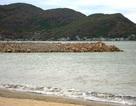 Bí thư Tỉnh ủy yêu cầu vét đất đá đã đổ xuống biển Quy Nhơn