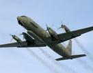 Quan hệ Nga-Israel liệu có sứt mẻ vì vụ máy bay bị bắn rơi?