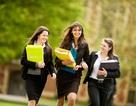 Triển lãm Du học Trung học Nội trú Anh-Mỹ, - chiếc vé vào những đại học hàng đầu thế giới