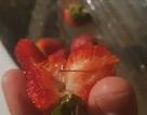 Australia bắt nghi phạm đầu tiên vụ kim nhọn bị gài vào hoa quả tươi