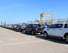 Đổ xô mua ô tô bán tải: Cơn sốt bất ngờ, khan hàng chém khách