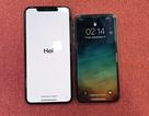 Đọ iPhone X với iPhone XS Max tại Việt Nam