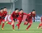 """Đội tuyển Việt Nam có sẵn sàng cho tư thế """"chiếu trên"""" tại AFF Cup?"""