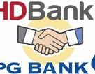 Petrolimex lãi 1.000 tỷ đồng nhờ sáp nhập PGBank vào HDBank