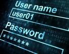 Hướng dẫn kiểm tra tài khoản trực tuyến đã từng bị hacker chiếm đoạt hay chưa