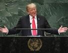 Đại sứ Mỹ lý giải tràng cười của lãnh đạo thế giới khi ông Trump phát biểu
