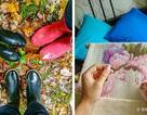 Những nguyên tắc sống khiến người Thụy Điển hạnh phúc nhất thế giới