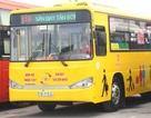 Thí điểm dịch vụ vận chuyển khách đi các cảng hàng không tại 9 tỉnh thành phố