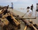 """Sau lũ bãi biển Sầm Sơn """"chìm"""" trong rác"""