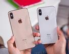 """iPhone XS và XS Max bị """"tố"""" gặp sự cố không sạc được pin"""