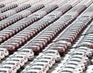 """86% xe nhập khẩu được miễn thuế, thị trường vẫn chưa thỏa """"cơn khát"""""""