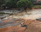 Vỡ đập bãi thải nhà máy phân bón, 45.000 m3 bùn đất thải tràn ra môi trường