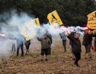 Cơn giận dữ của nông dân Pháp khi Trung Quốc thâu tóm đất nông nghiệp
