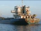 Tạm giữ tàu chở hơn 1.800 tấn lương thực không rõ nguồn gốc